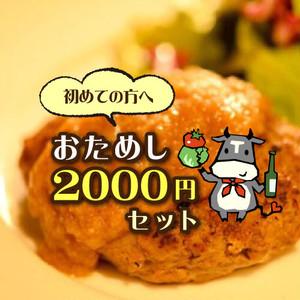 初めての方へ【Tetsuo特製!おためし2000円セット】
