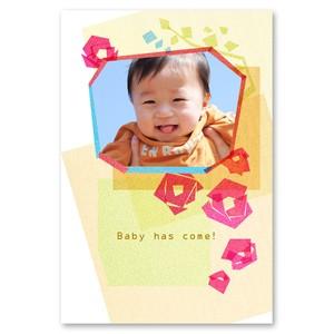 BAB_F002|出産報告