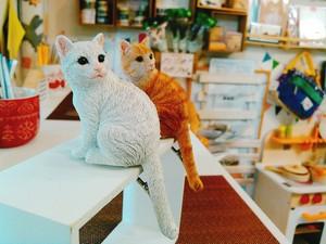 ネコのクリップホルダー EDGE CLIP