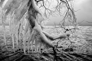 湖樹氷結  (1971)