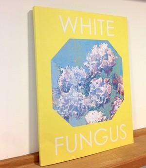 WHITE FUNGUS issue13 台湾アート雑誌