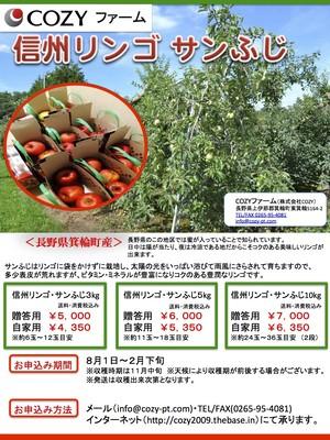 3kg(自家用)信州リンゴサンふじ