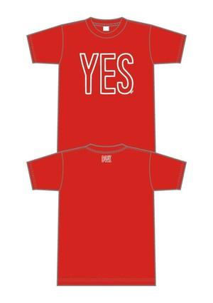 YES(RUMINA)