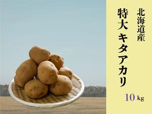 【期間限定・送料無料】北海道ニセコ産特大キタアカリ10kg