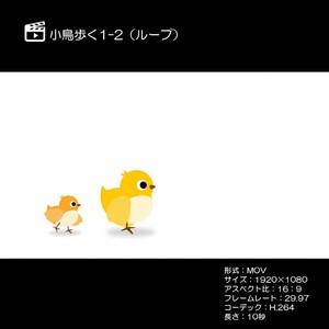 小鳥歩く1-2ループ