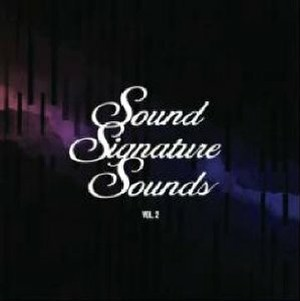 [CD] Sound Signature Sounds Vol.2 / Theo Parrish