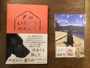 【セット販売】村井理子『犬がいるから』(亜紀書房)&『犬がいるから』特製ポストカード4枚セット