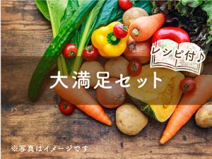 【単発便】大満足(L)セット ヤマト運輸発送 hina+a(12~14種類のお野菜と手作り加工品)☆100サイズ