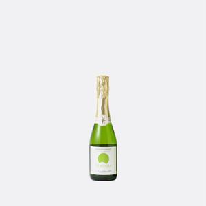 ナイアガラBRUIT2019ハーフボトル (スパークリング)