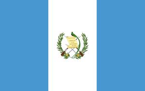 グァテマラ プランデルグアヤボ  パカマラ