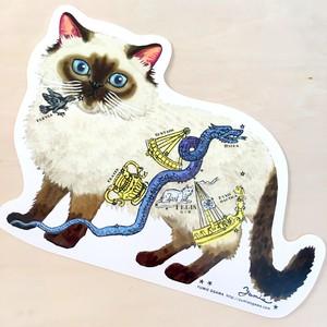 ダイカットポストカード「ペルシャ-スター」doc-cat 03