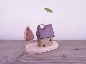 植物の家+庭 ラワン・キハダ 1105