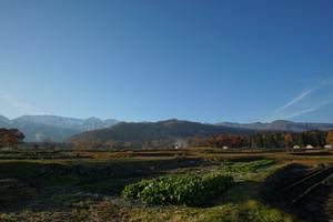 秋の白馬村の景観②、夕暮れ時の紅葉と山々(デジタルコンテンツ)