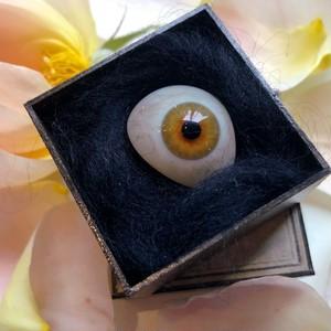 黄昏色の義眼