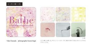 CoasterBook~Baihe~