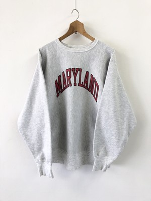 Champion REVERSE WEAVE 2-Sided College Print