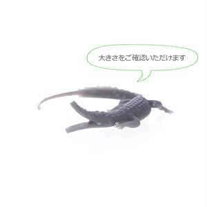 UV硬化樹脂 / 3Dモデル (ピアス) / クロコダイル 淡水パールフープピアス