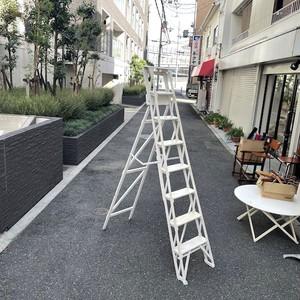 ビンテージ 梯子 ハシゴ 脚立 ホワイト シャビィ 木製