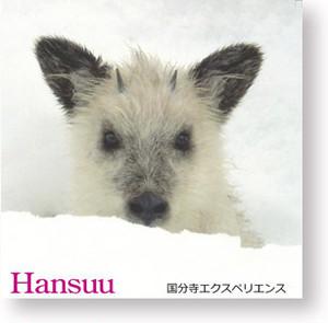 「Hansuu」  2010年