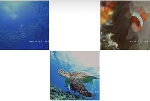 海のポストカード 3枚