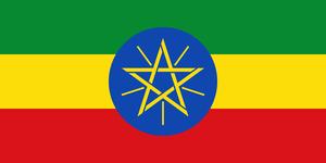 エチオピア グジG1 100g 浅煎り