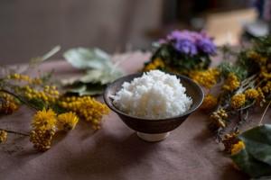 大自然米【10kg】精白米