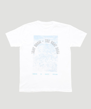 Allege Graphic The Gray Room T-Shirt ALSPT-CT04 White