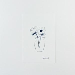 ポストカード anemone