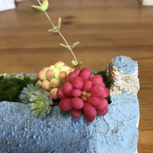 多肉粘土と春色の街 横長