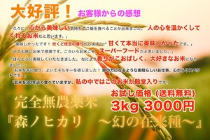 お試し用!大好評の完全無農薬玄米『森ノヒカリ ~幻の在来種~』 玄米3kg