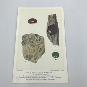 BRITISH MUSEUM vintage ポストカード #05