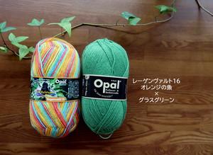 オレンジの魚&グラスグリーンセット【オパール毛糸】