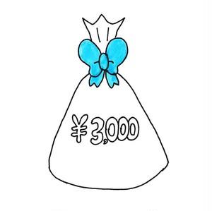 3000円ギフトセット