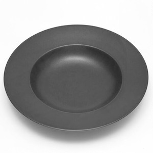 クロテラス パスタ皿 大
