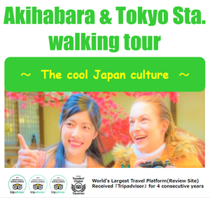 Akihabara & Tokyo station walking tour~The cool Japan culture~