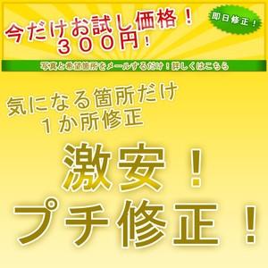 1カ所のみ!お試し写真プチ修正キャンペーン! 300円(税込324円))
