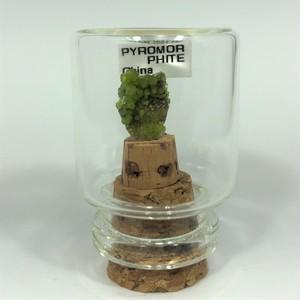 パイロモルファイト(緑鉛鉱) 中国産 宝石の森シリーズ ガラスボトルジュエリー bs082