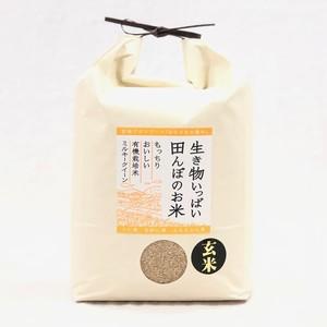 《新米》玄米5kg  有機ミルキークイーン