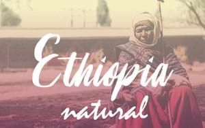 エチオピア/ナチュラル