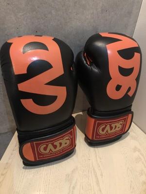 WDSBTG-ORG wdsBIGロゴボクシングトレーニンググローブオレンジ 8oz 10oz