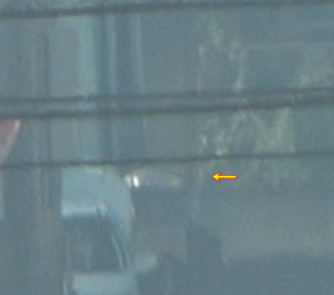 UFO video 12/31 2分