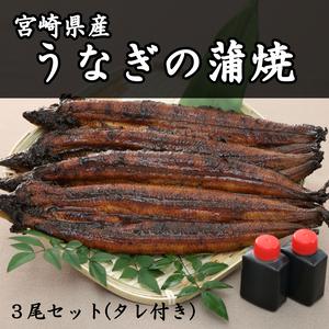 うなぎの蒲焼 3尾セット(タレ付き)【産地直送】