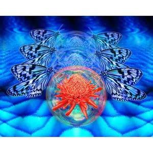 沖縄の蝶・02