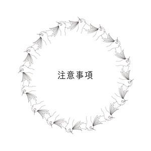 2018.4.12更新!!購入前に必ずお読みください!!