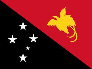 パプワニューギニア シグリ AA 200g