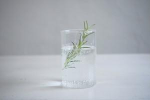 VISION GLASS / M