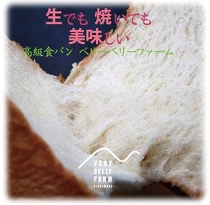 生でも、美味しい。国産素材のフクロウ印食パン 2斤×5本入り(送料無料)