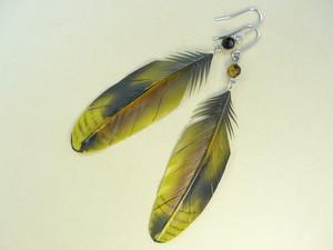 トラツグミ_ピアス・イヤリング_大 フックピアス チタンピアス 樹脂ピアス イヤリング 樹脂イヤリング 羽 羽根 フェザー 翼 鳥 野鳥 インコ