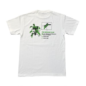 NEWAGE CLUB / DRACAENA TEE -WHITE-