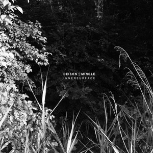 DEISON / MINGLE - Innersurface  CD